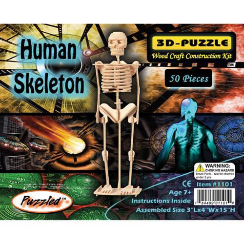 "3D Jigsaw Puzzle 50 Pieces 3""x4""x15""-Human Skeleton"