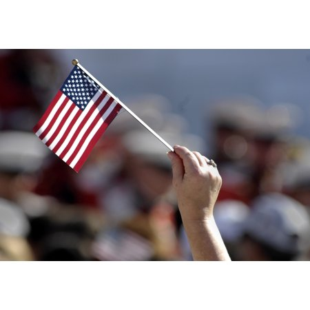 10 Small USA National Hand Held Cemetery Parade Decoration Flags](Parade Decorations)