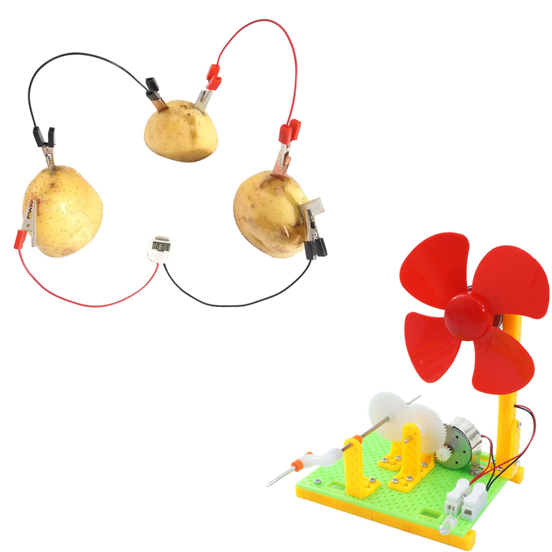 Education Subject Skelang Fruit Battery Science Experiment Kit with Electronic Clock for DIY Home Teaching Toy School Science Project