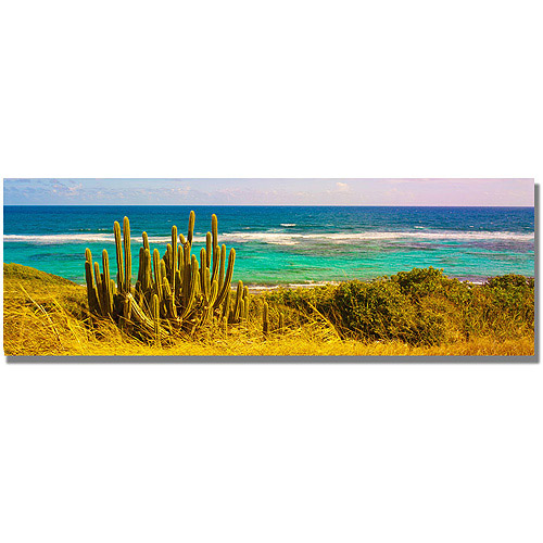 "Trademark Art ""St. Croix Beach"" Canvas Wall Art by Preston"