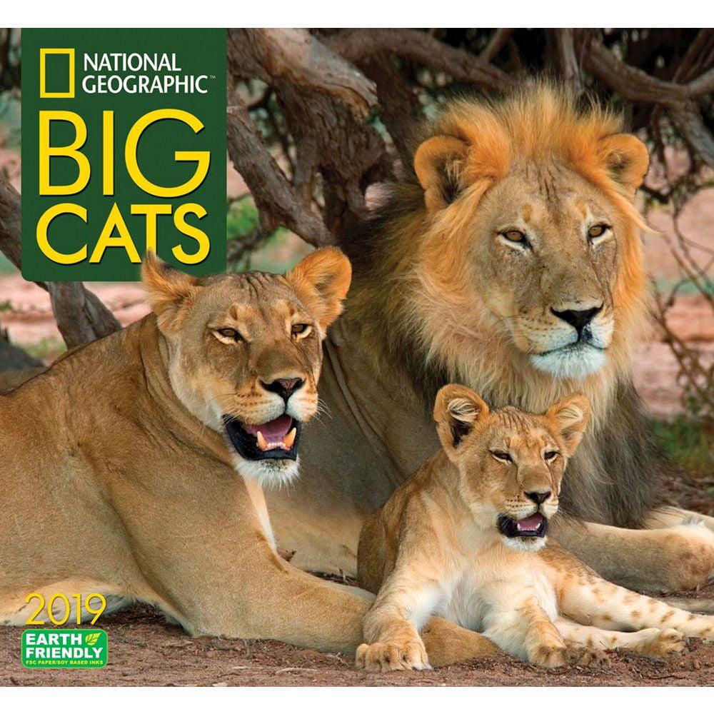 2019 Big Cats NG Wall Calendar, Big Cats by Zebra Publishing by Zebra Publishing