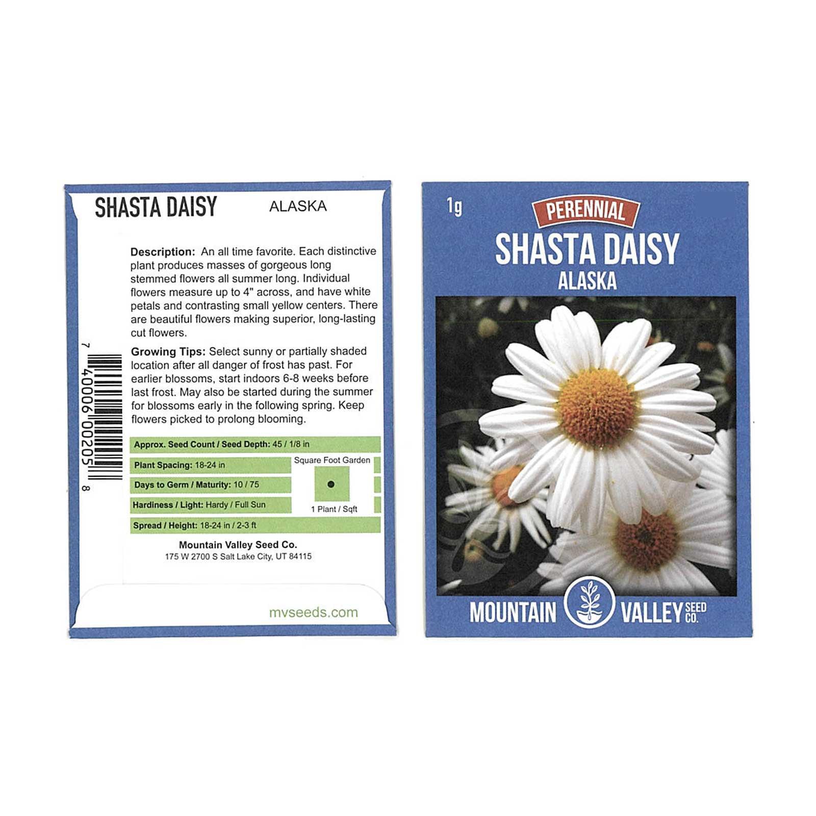 Shasta Daisy Flower Seeds - Alaska Variety - 1 Gram Seed Packet ...