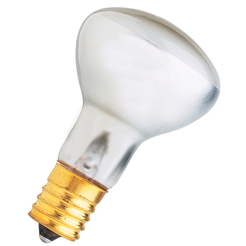 FeitElectric Frosted 120-Volt Incandescent Light Bulb