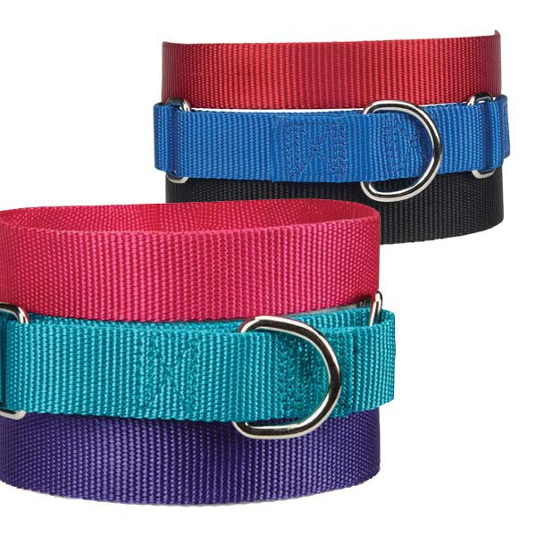 Gg Nylon Martingale Collar 14-20in Ultra Violet