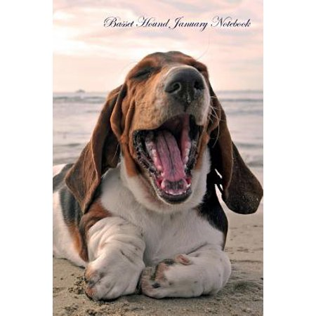 Basset Hound January Notebook Basset Hound Record, Log, Diary, Special Memories, to Do List, Academic Notepad, Scrapbook & More - Basset Hound Costumes Halloween