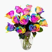 Rainbow Tie Dye Tinted Roses, One Dozen