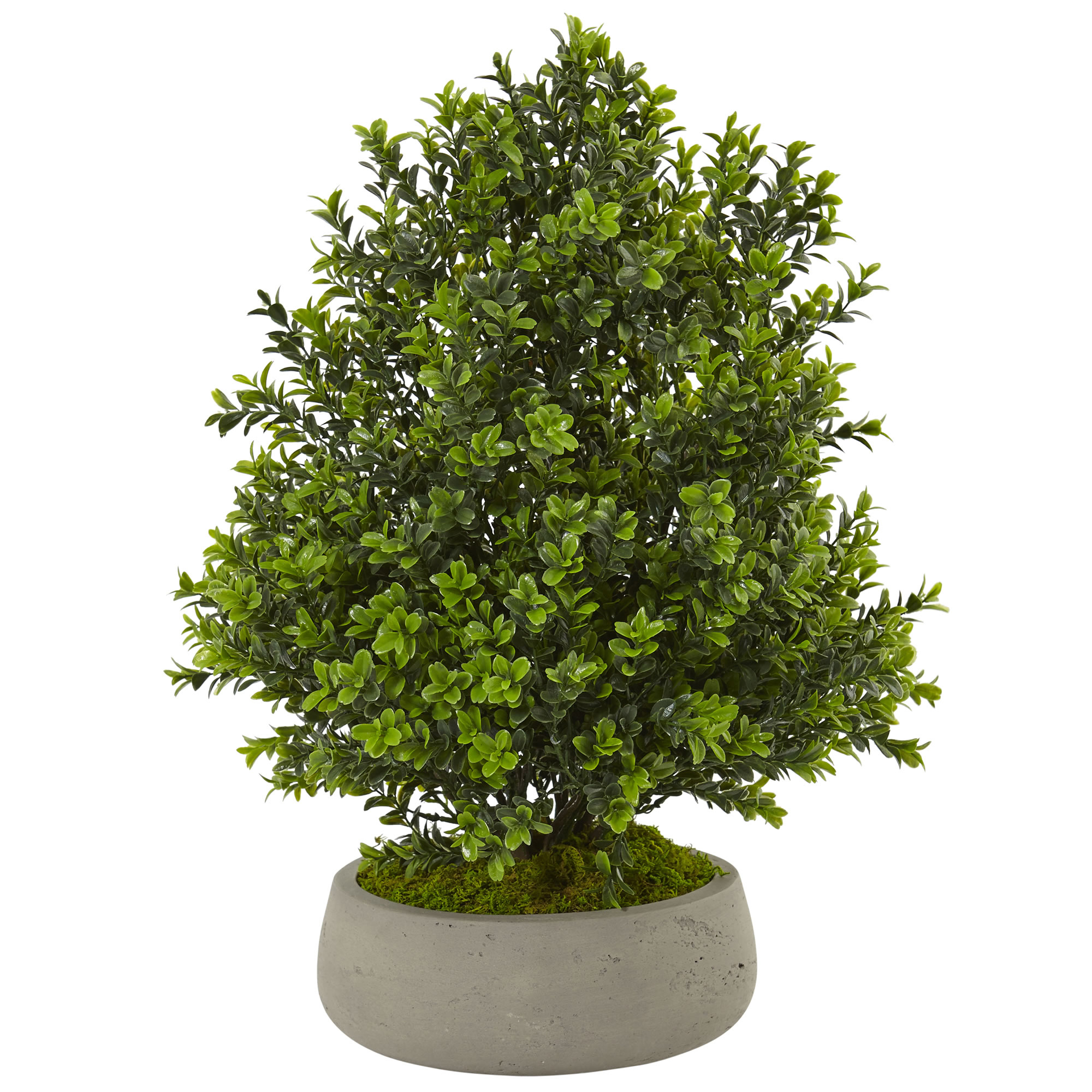 Boxwood Artificial Plant in Stone Planter (Indoor Outdoor) by Nearly Natural