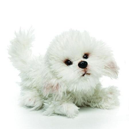 Bichon Frise Pups (Bichon Frise Small 9 inches Dog & Puppy Stuffed Animal by Nat and Jules (00043) )