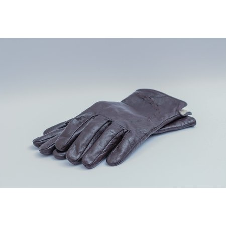 Womens Dark Brown Leather - Laminated Poster Apparel Ladies Dark Brown Leather Gloves Womens Poster Print 11 x 17