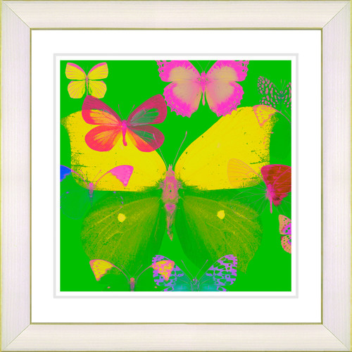 Studio Works Modern 'Butterfly Montage' by Zhee Singer Framed Painting Print in Green/Yellow
