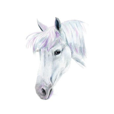 Horse Home Wall Shelf Decor Animal Decorations Watercolor Small Sign, 7.5x10.5 Inch (Horse Decorations)