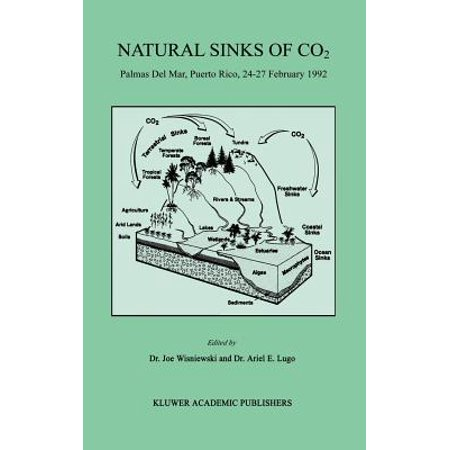 Natural Sinks of Co2 : Palmas del Mar, Puerto Rico, 24-27 February 1992