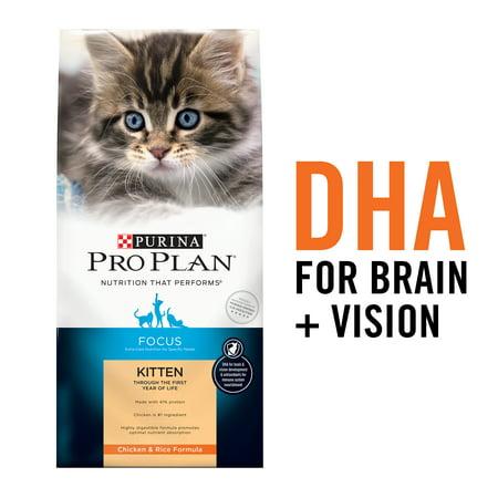 Purina Pro Plan High Protein Dry Kitten Food, FOCUS Chicken & Rice Formula, 16 lb. Bag