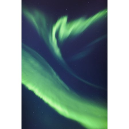 A green northern lights corona in the sky above the tony knowles coastal trail in winterAnchorage alaska united states of america Canvas Art - Kevin Smith Design Pics (12 x 19)