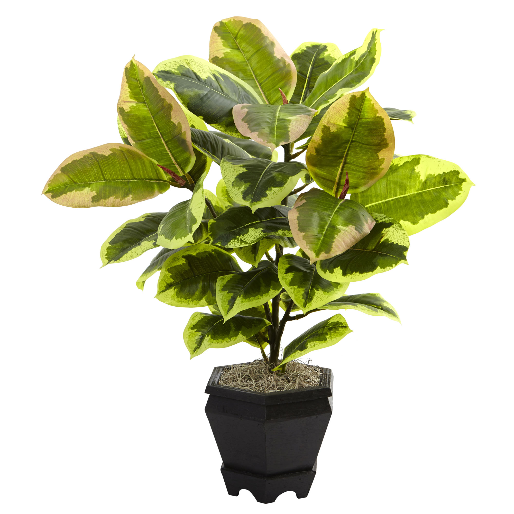 Nearly Natural Variegated Rubber Leaf with Planter