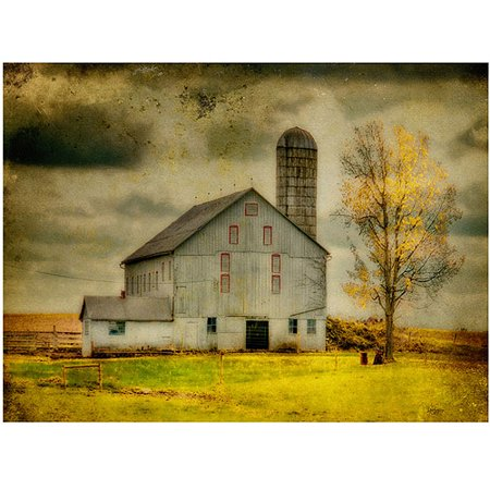 Trademark Fine Art   Old Barn On Stormy Afternoon   Canvas Art By Lois Bryan