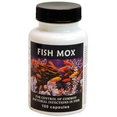 725068000723 upc thomas labs fish mox upc lookup for Thomas labs fish mox