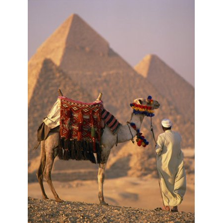 Camel with Woven Saddle Cloth Being Led Towards Pyramids by Man in White Robe, at Giza, Egypt Print Wall Art - Led Cloths