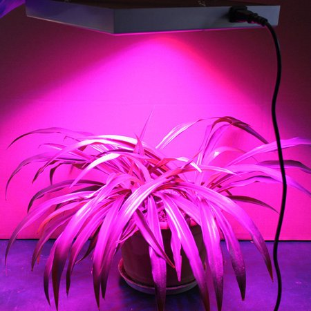 Ktaxon 225 LED Grow Light Hydroponic Lamp, Blue & Red, 14 Watts Quad-band Plant Light for greenhouse medical and indoor. - image 4 of 6