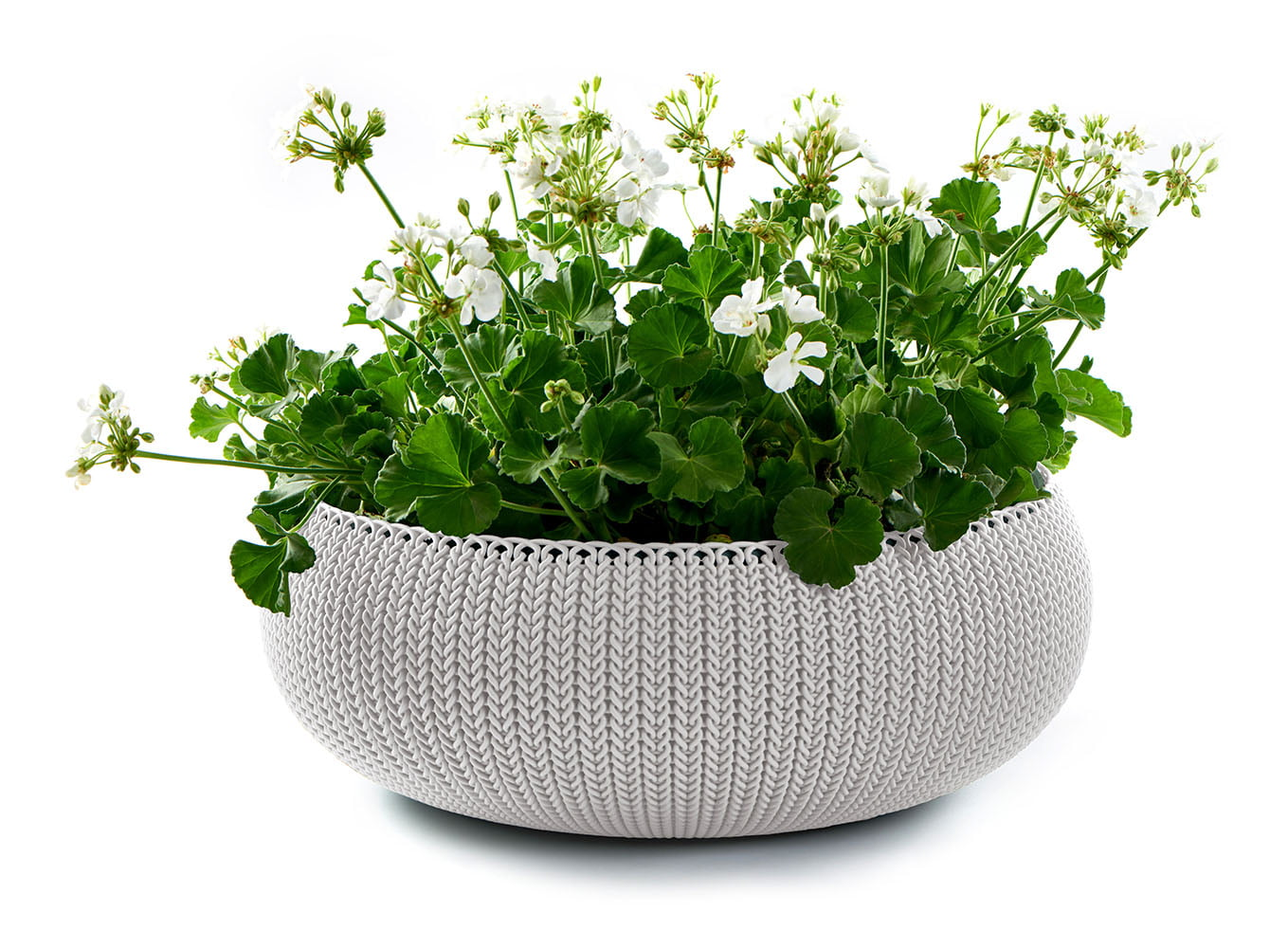 Keter Knit Cozie 21.3 in. dia. Large Resin Planter, Oasis White by Keter