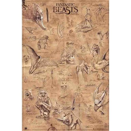 - Fantastic Beasts And Where To Find Them - Movie Poster / Print (The Beasts) (Size: 24