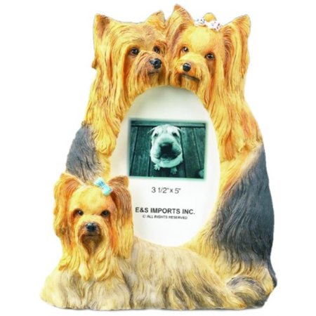 Yorkie Picture Frame Holds Your Favorite 3 x 5 Inch Photo, A Hand Painted Realistic Looking Yorkie Family Surrounding Your