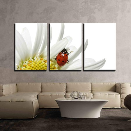 wall26 - 3 Piece Canvas Wall Art - Ladybug on Daisy - Modern Home Decor Stretched and Framed Ready to Hang - 16