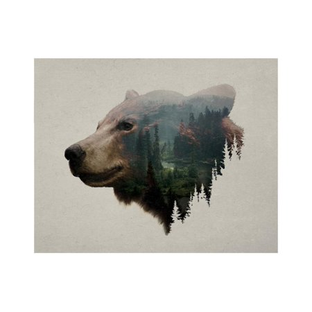 Pacific Northwest Black Bear Print Wall Art By Davies (Best Fruit Trees For Pacific Northwest)