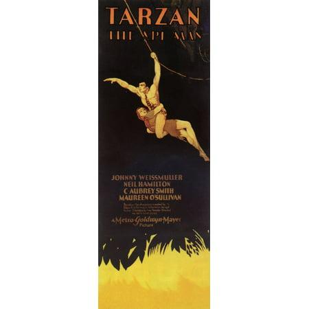 Tarzan The Ape Man  1932  14X36 Movie Poster
