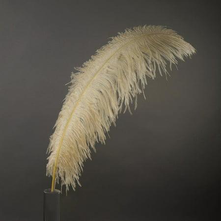Beige Ostrich - Zucker Feather Products Ostrich Wide Prime Femina Feathers - Beige