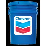 Chevron Regal R&O ISO 46   5 Gallon Pail