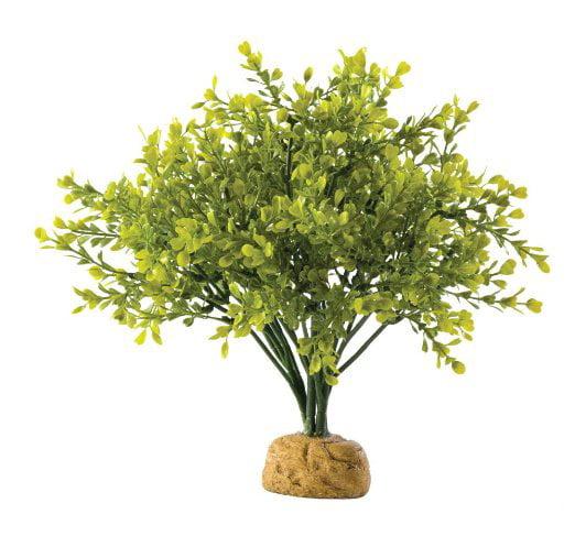 Exo-Terra Plant, Boxwood Bush