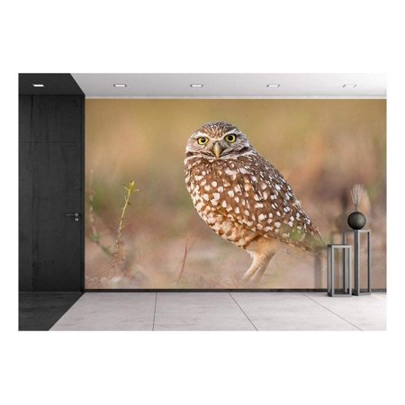 wall26 a Standing Owl Removable Wall Mural Self adhesive Large Wallpap