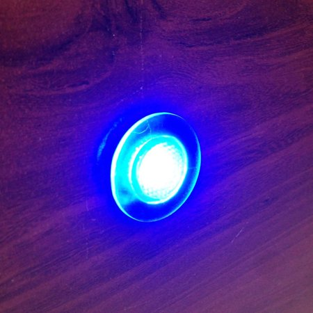 Pactrade Marine Boat LED Livewell 12 V Button Blue Courtesy Light Waterproof