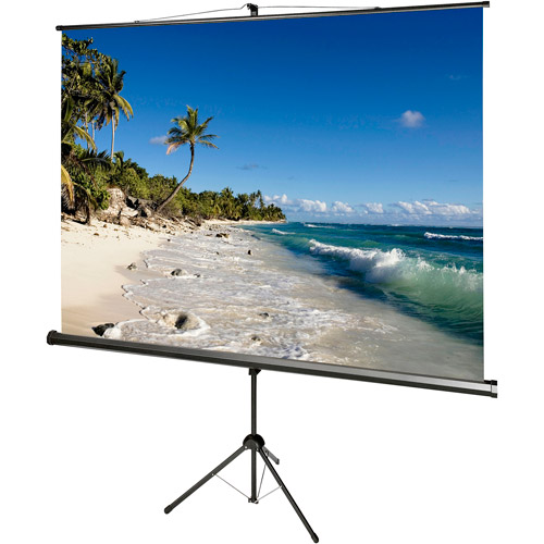 "Draper AccuScreens 99"" Tripod Screen"