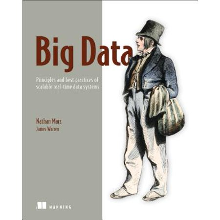 Big Data : Principles and Best Practices of Scalable Realtime Data