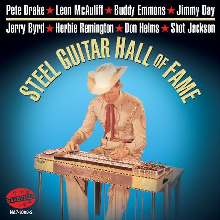 Steel Guitar Hall Of Fame (CD)