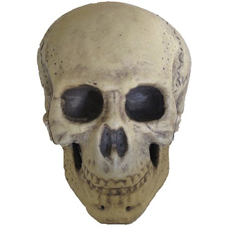 Foam Skull Halloween Prop - Exorcist Girl Halloween Prop