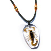 PSB1101 Real Bug Necklace-Scorpion
