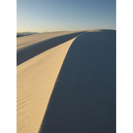 Dune Shadow (Canvas Print Wilderness Desert Dunes White Sands Shadows Stretched Canvas 10 x 14 )