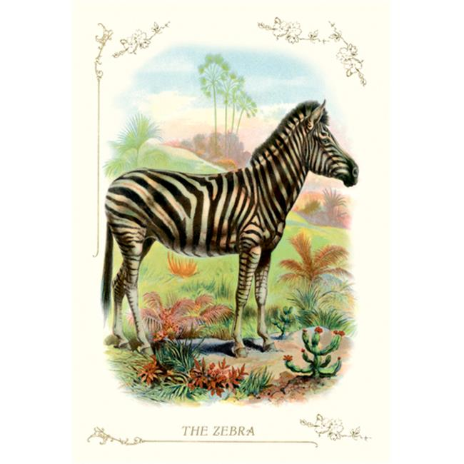 Buy Enlarge 0-587-11198-4P20x30 Zebra- Paper Size P20x30
