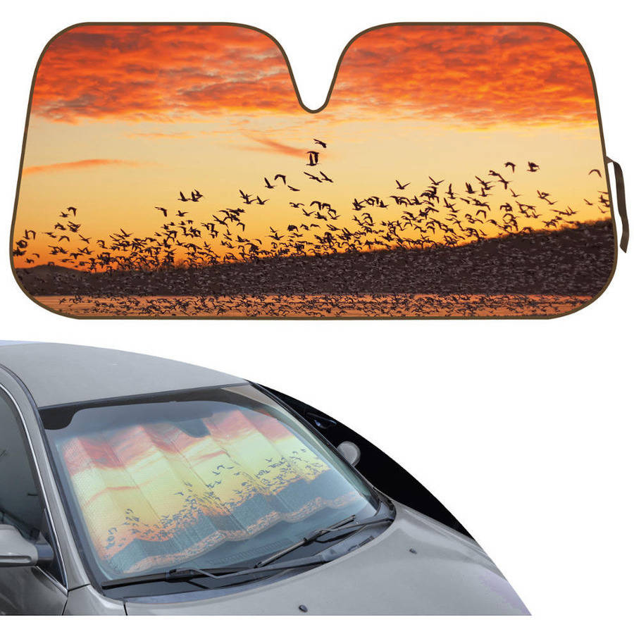 BDK Design Auto Auto Shade for Car SUV Truck, Silhouette Flock of Birds at Sunset, Jumbo, Double Bubble Folding Accordion