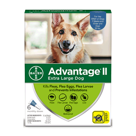 Advantage II Flea Prevention for Extra Large Dogs, 6 Monthly