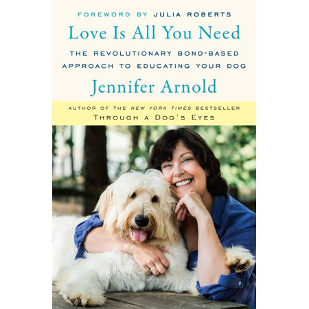 Love Is All You Need : The Revolutionary Bond-Based Approach to Educating Your