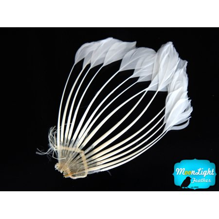 Gatsby Center Pieces (1 Piece - White Duck Feather Center Stripped Fan)