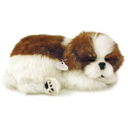 Perfect Petzzz Shih Tzu Puppy