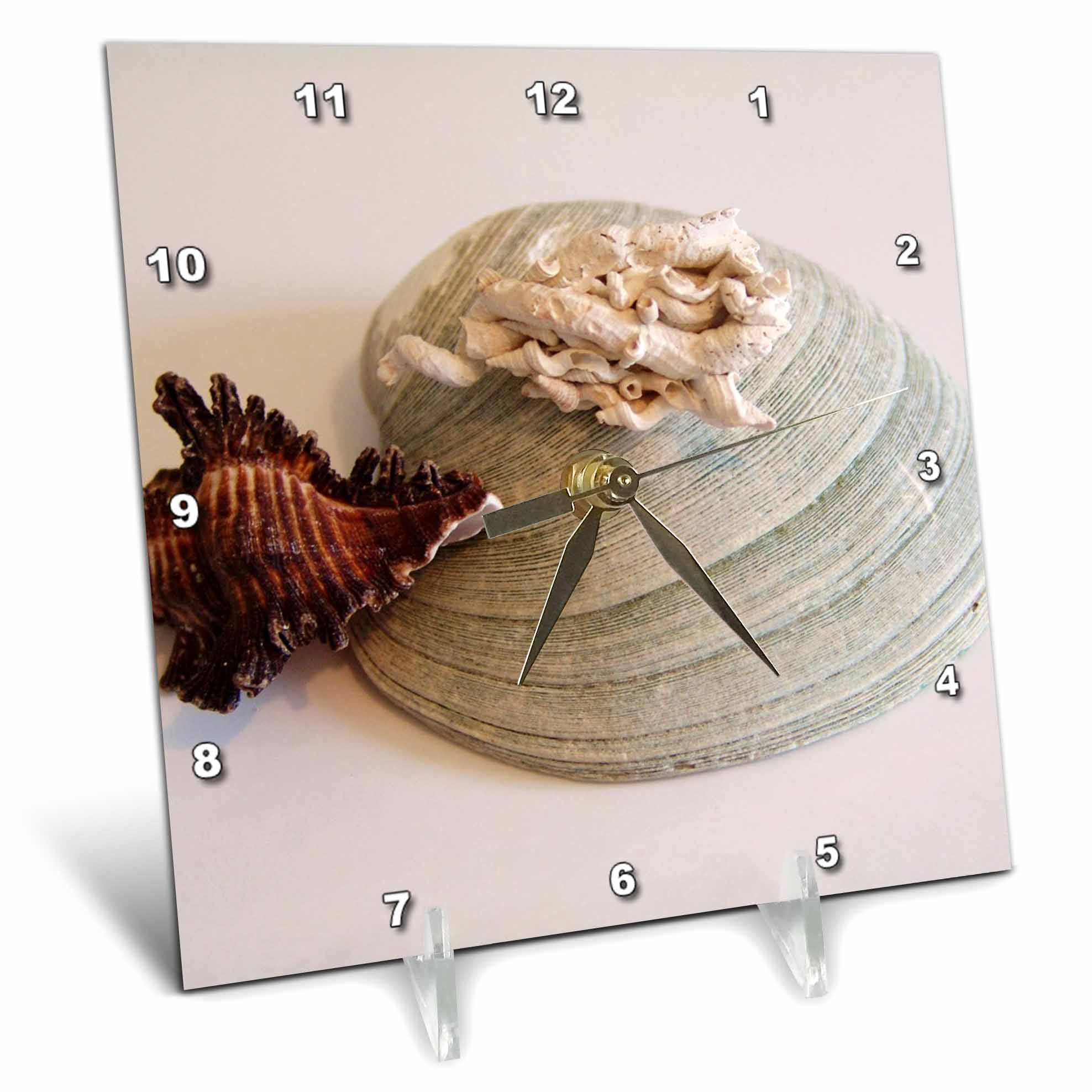 3dRose Seashells On White, Desk Clock, 6 by 6-inch by 3dRose