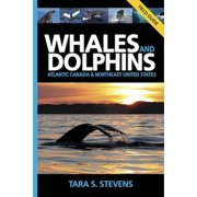 Whales and Dolphins Field Guide : Atlantic Canada and Northeast United States