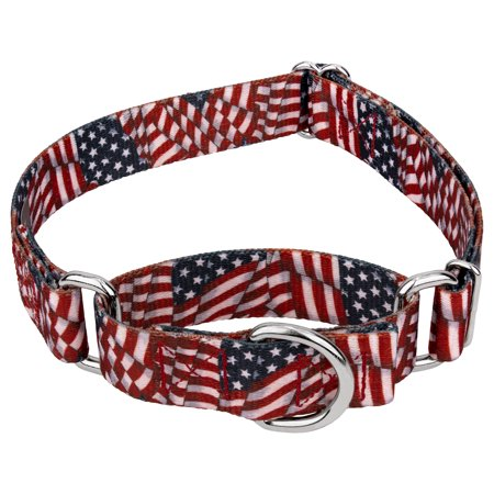 Country Brook Petz™ Patriotic Tribute Martingale Dog Collar