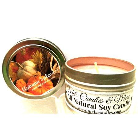 Autumn Splendor -4 Oz All Natural Soy Candle Tin - Autumn Candles